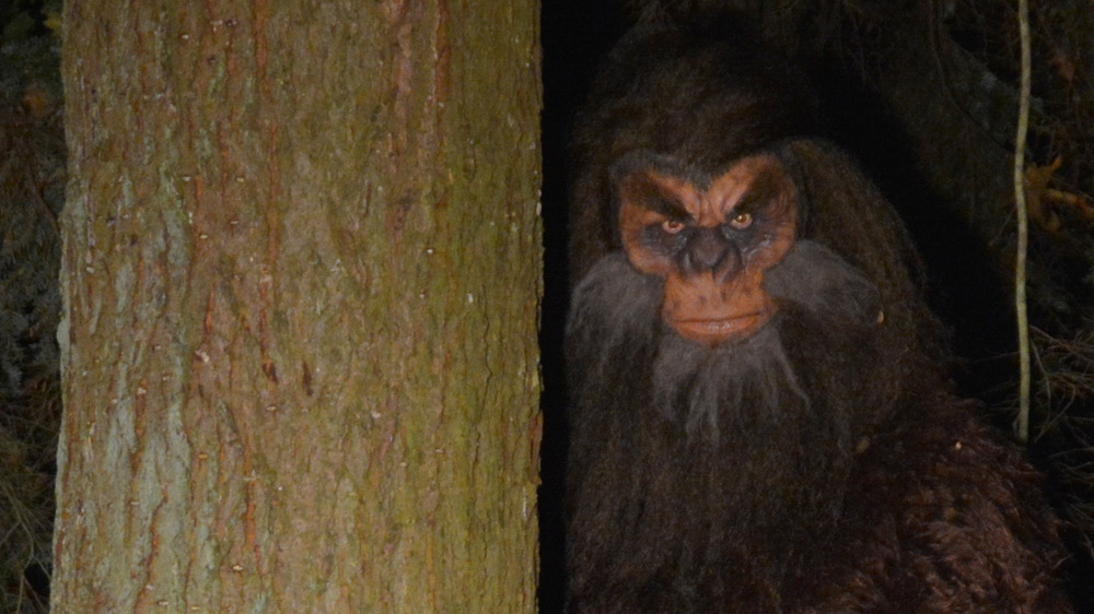 Survey Reveals Surprising Number Of People Who Think Bigfoot Actually Exists