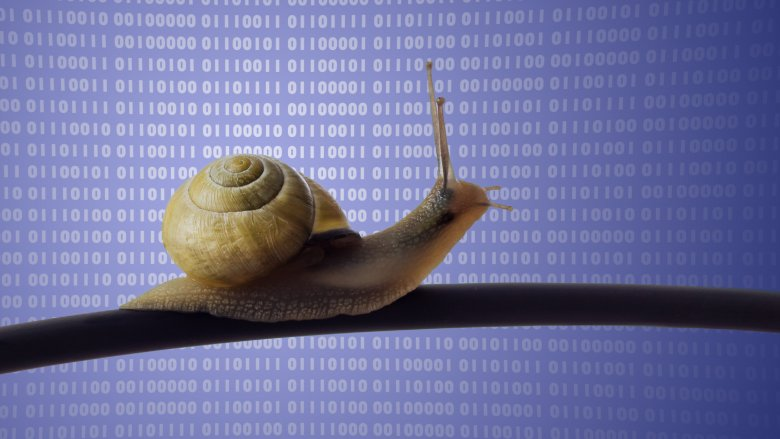 Snail on a cable