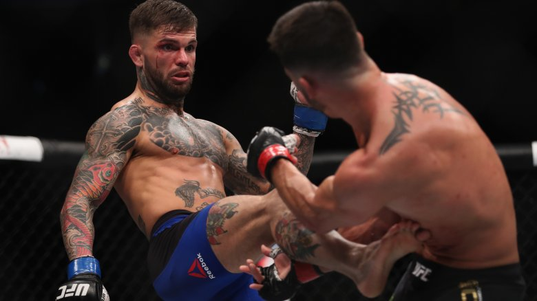 cody garbrandt mma fight