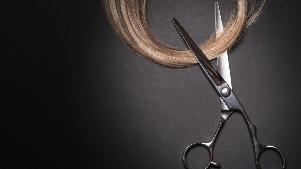 Close up of a lock of blonde hair being cut by a pair of scissors