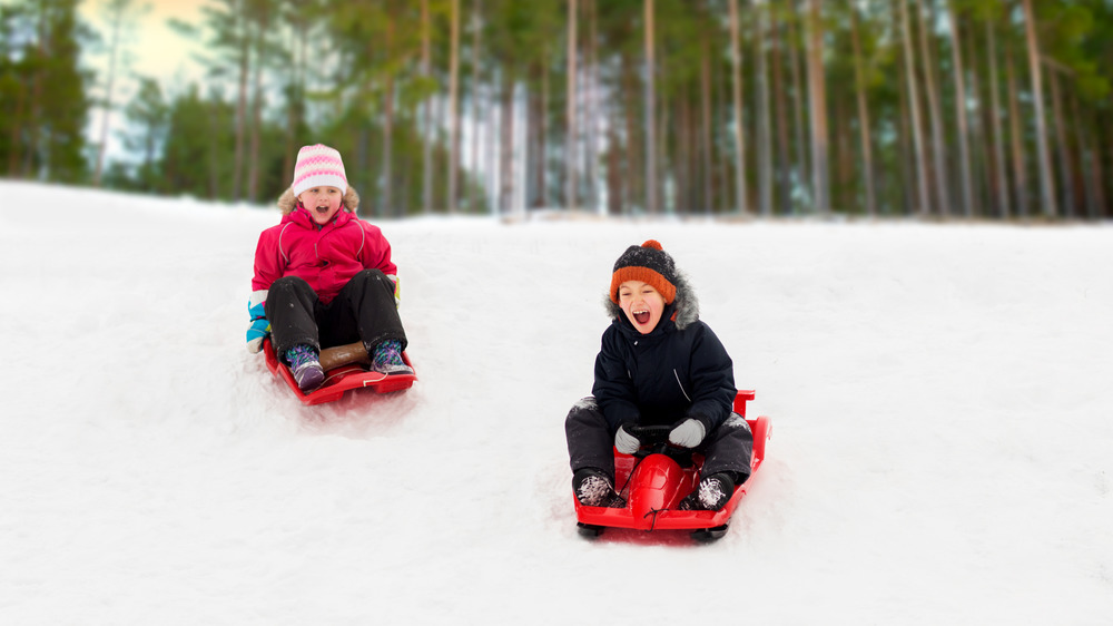 A photograph of two excited children sledding down a hill.