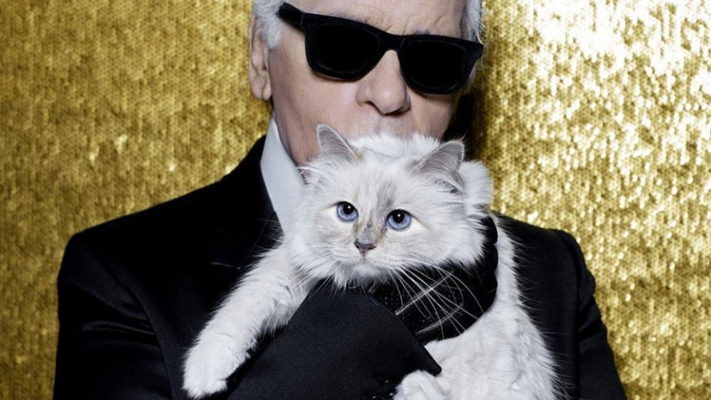 The Most Pampered Pets In History