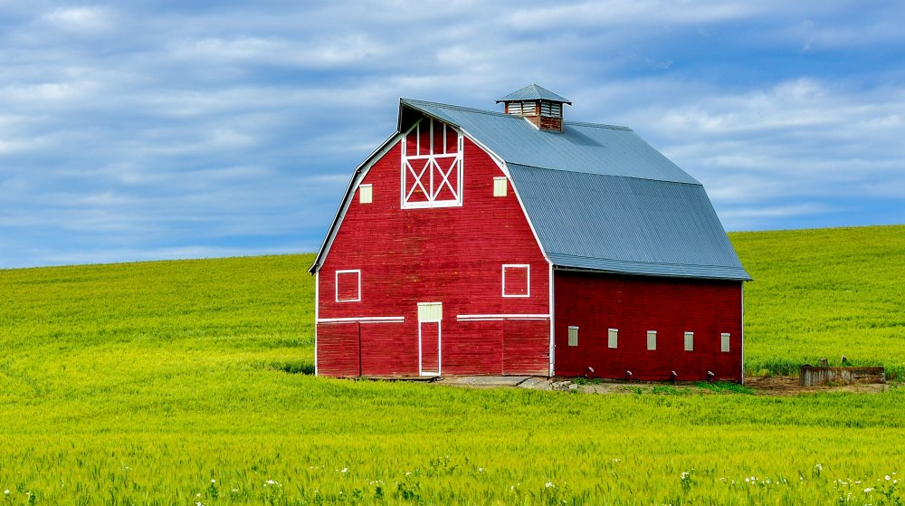 The Real Reason Barns Are Painted Red