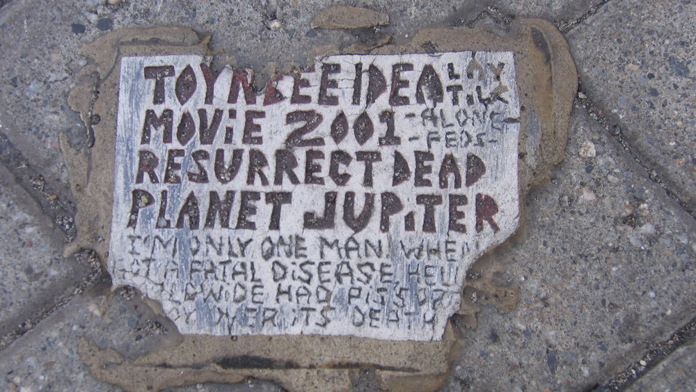 A Toynbee tile on asphalt