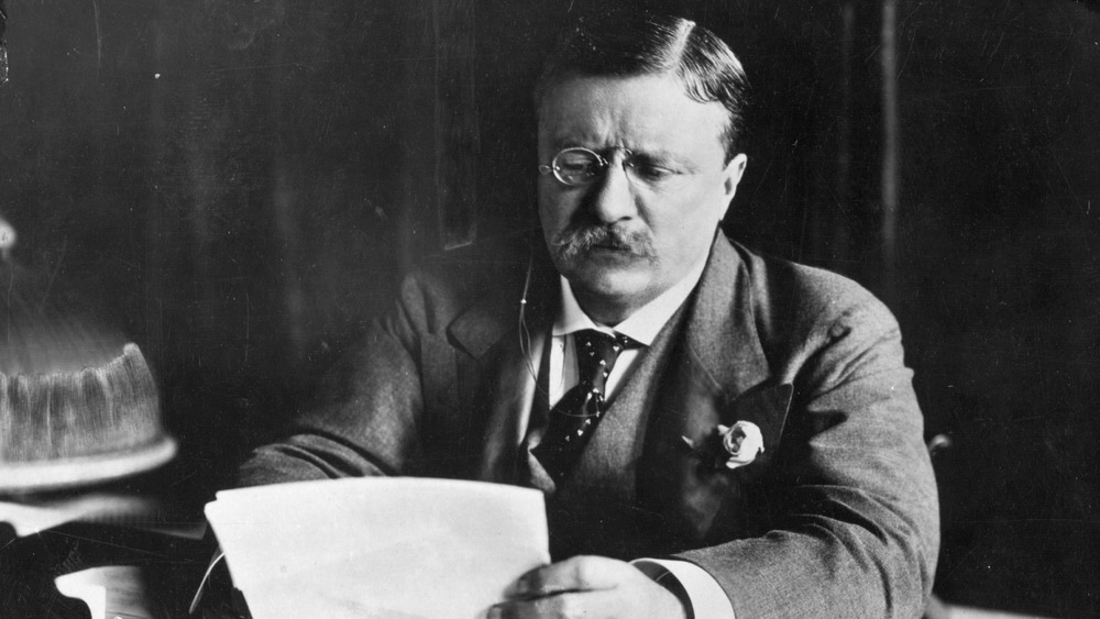 Teddy Roosevelt papers
